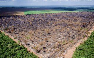 O desmatamento na Amazônia entre agosto de 2018 e julho de 2019 foi o maior da década. Foto: Mayke Toscano/Gcom-MT
