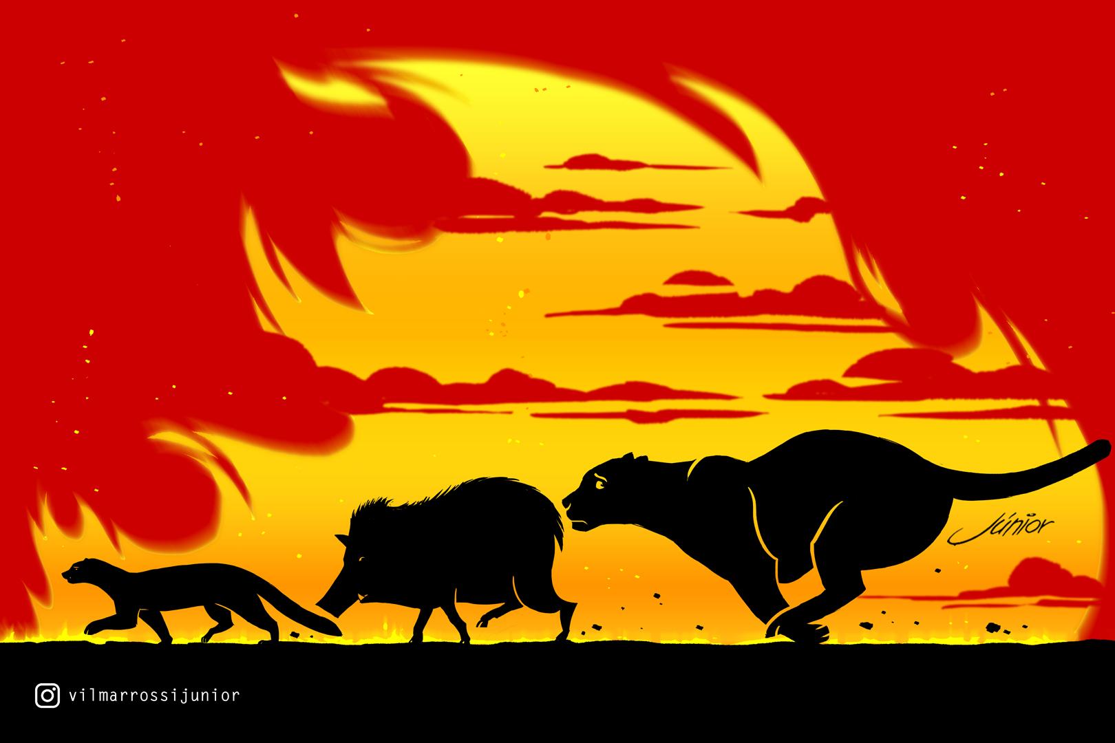 Ilustração de Vilmar que mostra os personagens Timão, Pumba e Simba. Foto: Divulgação.