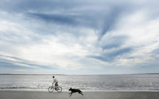 Cachorro correndo atrás de garoto andando de bicicleta. Foto: Getty Images
