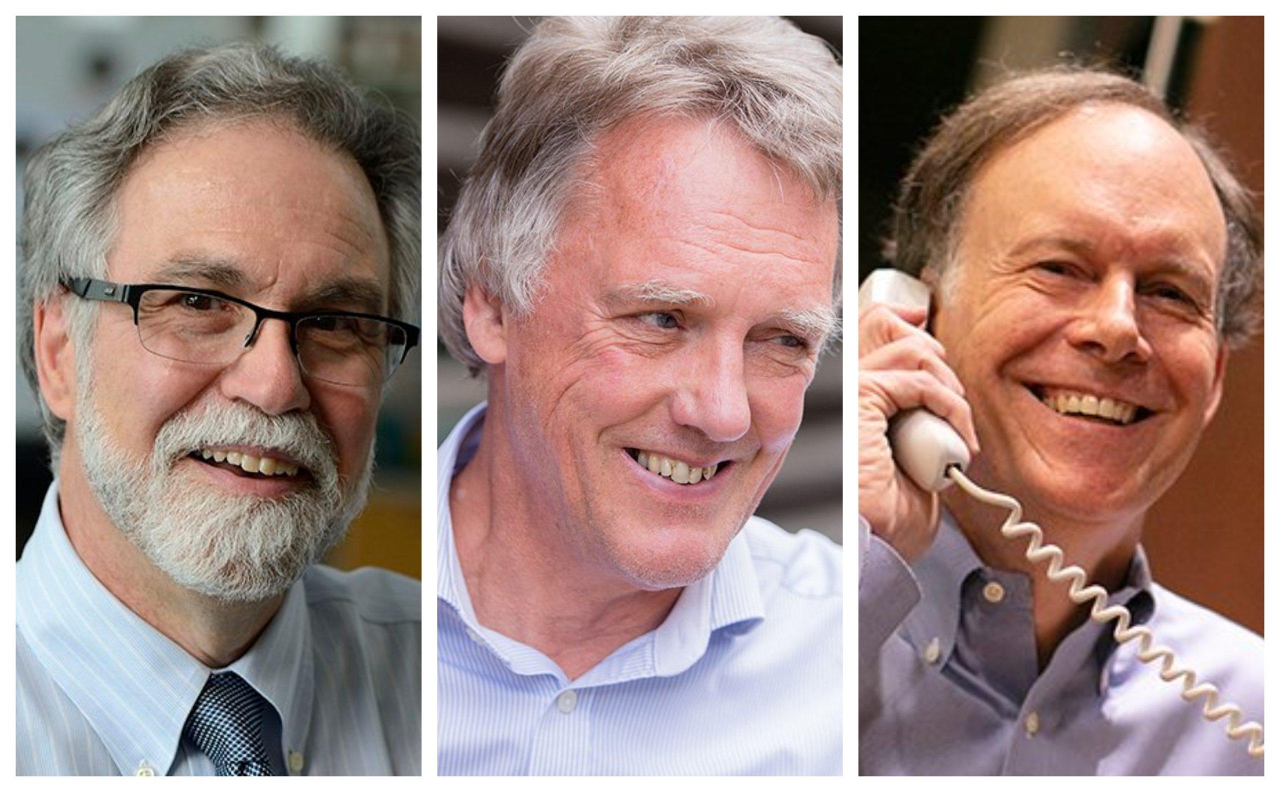 Da esquerda para a direita: Gregg Semenza, Peter Ratcliffe e William G. Kaelin Jr,, os vencedores do Nobel de medicina de 2019. Fotos: Twitter/ Reprodução.