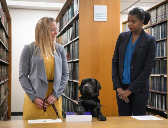 A cadela Hatty jurou cumprir seu dever, como manda a tradição. Foto: Cook County State's Attorney