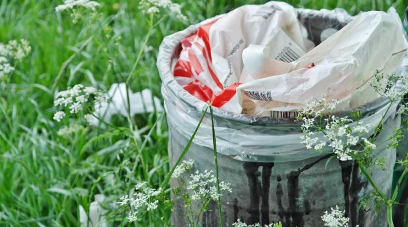 lixo-home