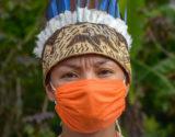 Indigenas-Coronavirus