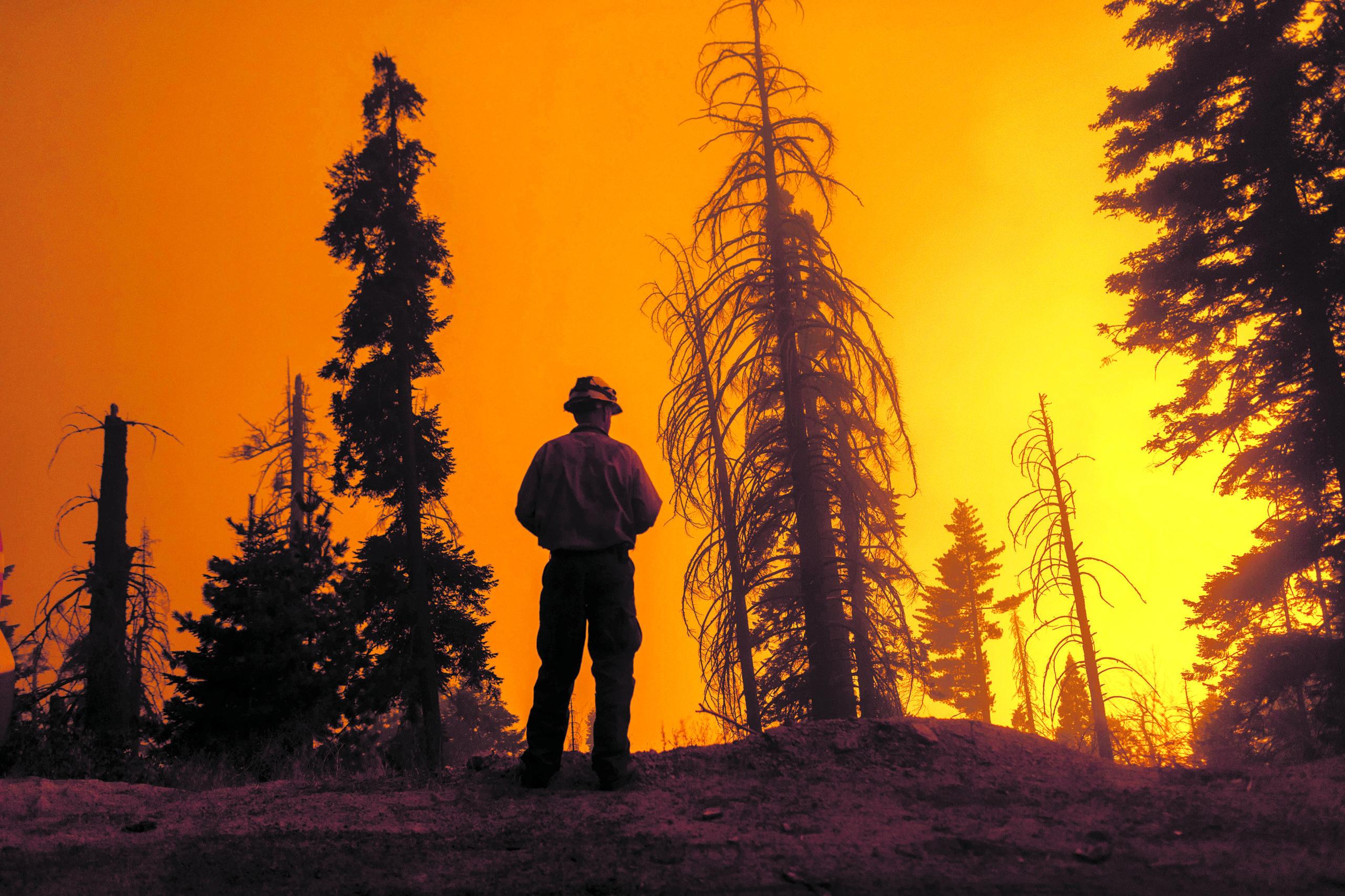 Edição 157, incêndios na Califórnia