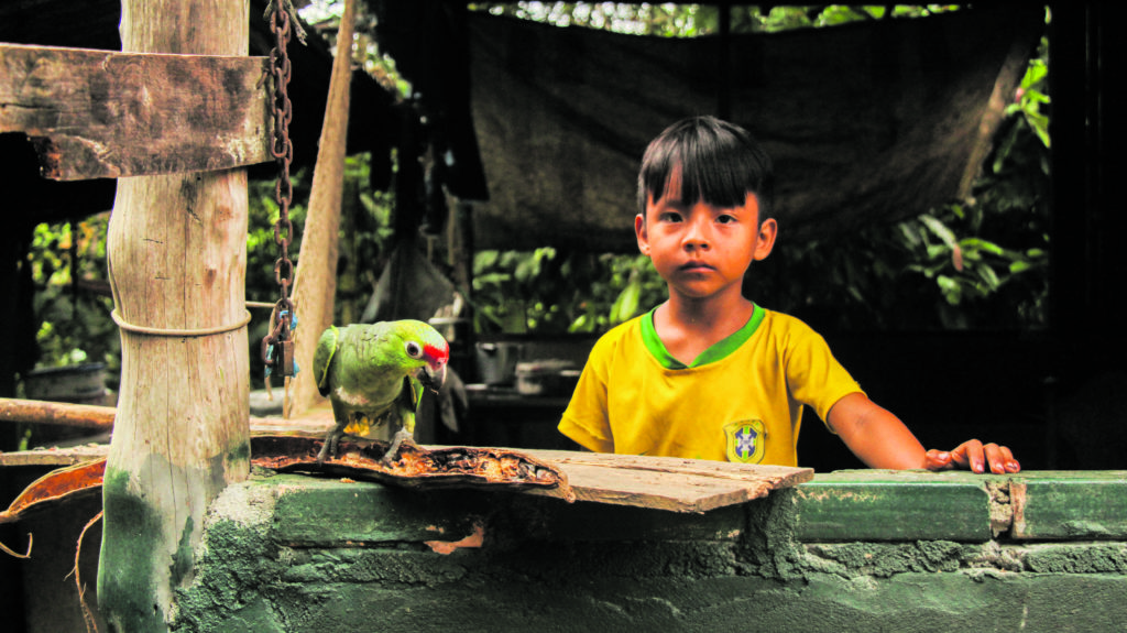 educação infantil indígena pandemia 173