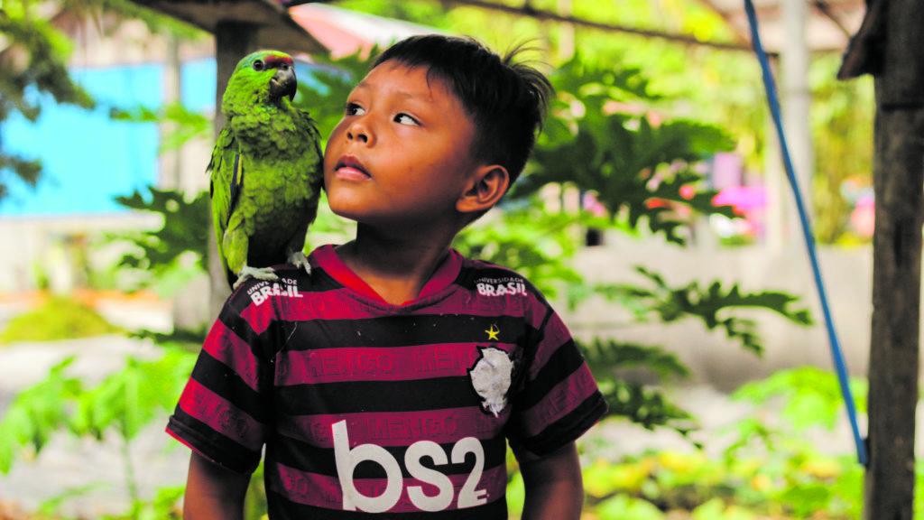 Victor educação infantil indígena na pandemia 173